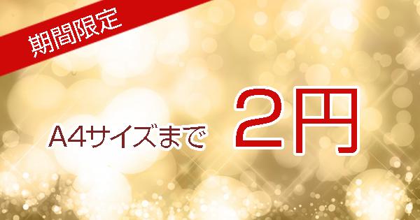 レリアンスキャンペーンA4サイズ2円~